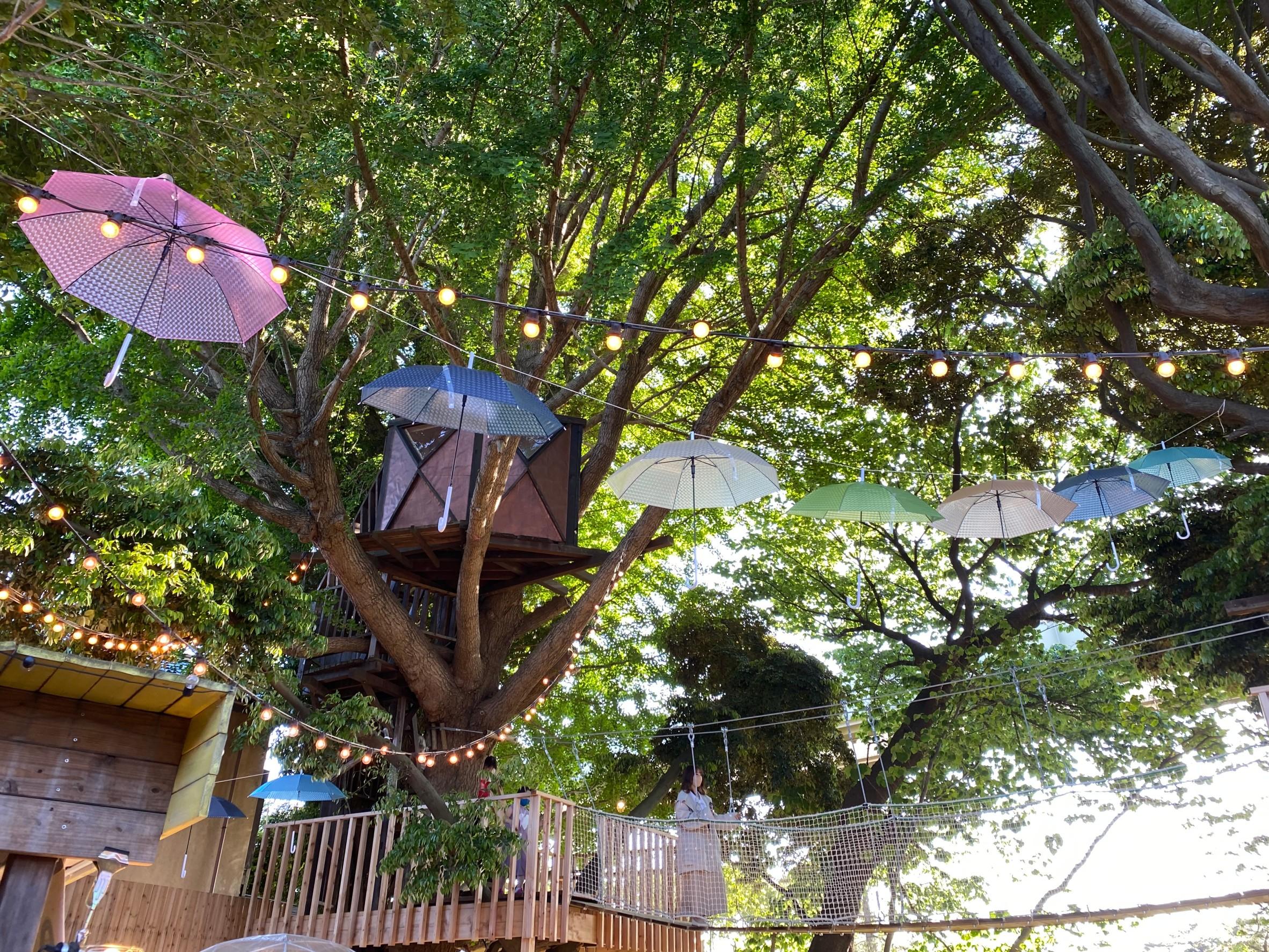 椿森コムナには小さいなツリーハウスもあります。